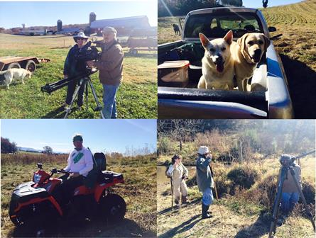 A few images taken during our 'Save our Dogs' video shoot!