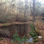 Preserved property in Polk County, TN.