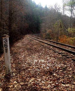 Old CSX railroad tracks crossing through FLC's conservation easement in Polk County, TN.