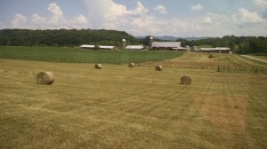 The Harris Farm is currently leased for hay production. Photo courtesy of farmer, Lynn Waters.