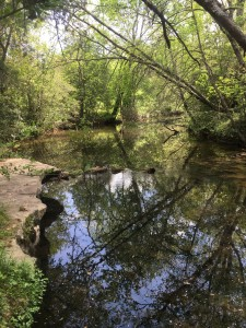 Image of Mill Creek