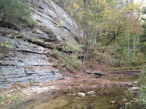 Limestone cliff and creek.