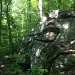 One of numerous rock outcrops on the property.