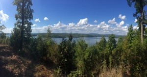 View from a recently preserved 380 acre property in Roane County, TN, looking out at Watts Bar Lake.
