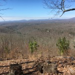 View from the north side of the property.  The 1,000 acre Roane County tract is situated along the eastern edge of the Cumberland Plateau, also known as the Cumberland Escarpment.