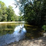 MACON COUNTY, AL (145 acres) - A mostly wooded tract of land with creek frontage along Uphapee Creek (pictured), this property lies a few miles downstream from the Tuskegee National Forest.  The tract's water resources drain into Uphapee Creek, and downstream to the Tallapoosa River, resulting in diverse aquatic inputs to these watersheds. Uphapee Creek and the Tallapoosa River are priorities of the Alabama SWAP. Both Uphapee Creek and the Tallapoosa River are part of the Mobile River Basin. The Mobile Basin and particularly the Mobile Delta, are home to hundreds of species of fish, crayfish, mussels, snails and other aquatic life, many of which are found nowhere else on earth.