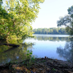 LOWNDES COUNTY, AL (280 acres) - This is an agricultural and wooded tract of land with river frontage along the Alabama River (pictured).  The property is adjacent to the State of Alabama's Lowndes Wildlife Management Area. The tract possesses certain ecological, natural, scenic, open space, and wildlife habitat values, such as bottomland forests, mesic forests, wetlands, river frontage, open agricultural fields, and open space.