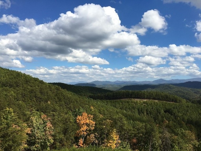 Monroe County, TN -